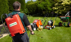 Greensleeves Belfast: Lawn Treatment with Weed or Moss Control and Seasonal Fertiliser with Greensleeves (Up to 60% Off)