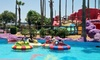 The Zone Action Park   - McAllen: Three Hours of Activities for 2, 4, or 6 or Birthday Party for Up to 12  at The Zone Action Park(Up to 54% Off)