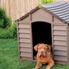 Starplast Hundehütte