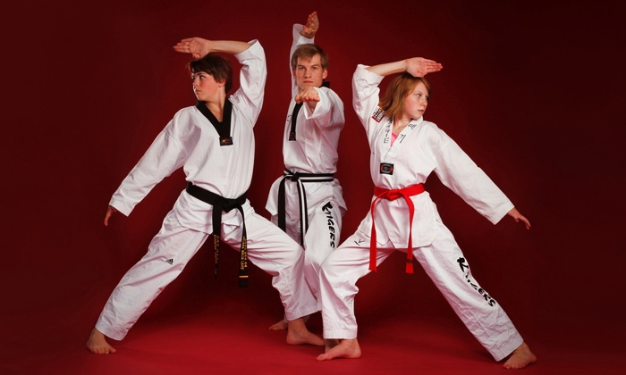 KTigers Taekwondo - Coeur D'Alene: One Month of Taekwondo Classes with Uniforms for One or Two People at KTigers Taekwondo (Up to 83% Off)