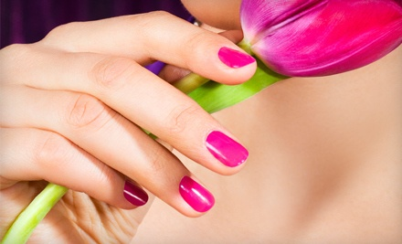 One Gelish or Shellac Application (a $45 value) - Tonik spa and salon in Greenwood Village