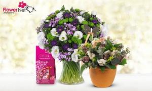 flowernet: לראשונה בגרופון - FlowerNet, חנות אינטרנטית מובילה המתמחה בחבילות פרחים וזרים לכל מטרה! שלל מוצרי איכות החל מ-49 ₪ בלבד