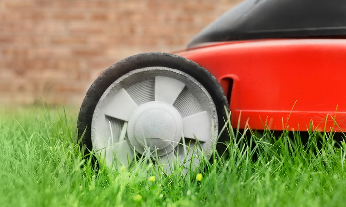 SemperFI Lawn Care Services - Washington DC: Cutting and Edging for a Small, Medium, or Large Yard from Semper Fi Yard Service Inc. (Up to 52% Off)