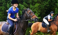 30-Minute Riding Lesson for One or Two Children or 60-Minute Riding Lesson for One or Two Adults at Lime Park (50% Off)