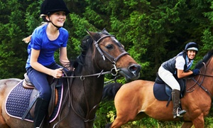 Lime Park: 30-Minute Riding Lesson for One or Two Children or 60-Minute Riding Lesson for One or Two Adults at Lime Park (50% Off)