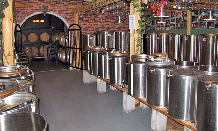 The Wine Garden - Central: $75 for Winemaking Experience with Argentinian Wine at The Wine Garden ($150 Value).