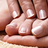 Up to 55% Off One or Two Mani-Pedis at Milan Spa & Nails