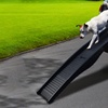 Portable Dog Ramp for Home or Travel Use