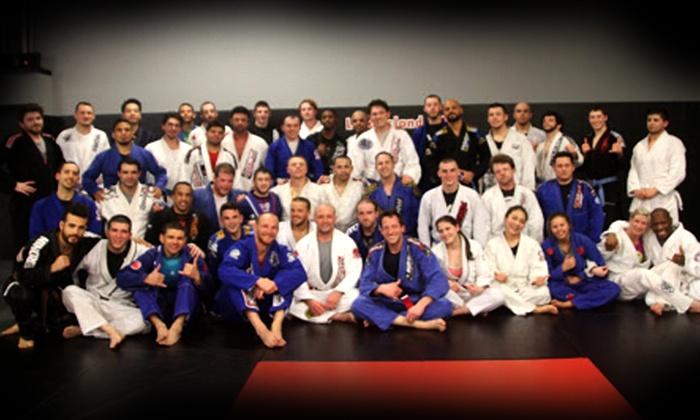 Long Island MMA - East Farmingdale: Five Martial Arts Classes at Long Island MMA (75% Off)