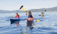 2 horas de ruta en kayak de mar o stand paddle para 2, 4 o 6 personas desde 14,95 € en Es Náutica Motoracer