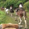 Up to 58% Off A Riding Lesson or Guided Trail Ride