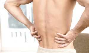 Stekel Chiropractic: Introductory Chiropractic Exam with One or Two Adjustments at Stekel Chiropractic (Up to 91% Off)