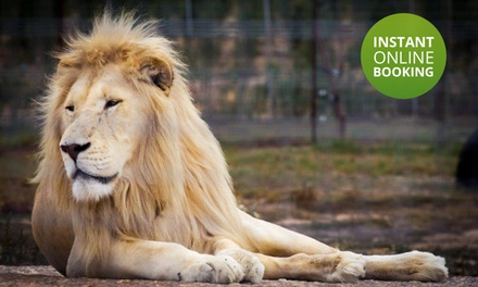 Entrance to the Big Cats Park and Wine Tasting from R109 for Two Adults at Vredenheim (39% Off)