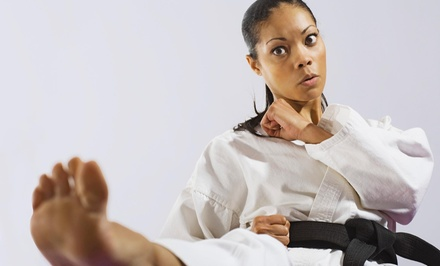$33 for $110 Worth of MartialArts Lessons  The Academy
