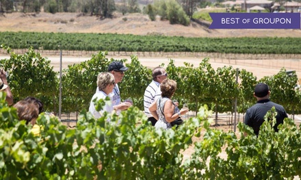 jasons vineyard groupon