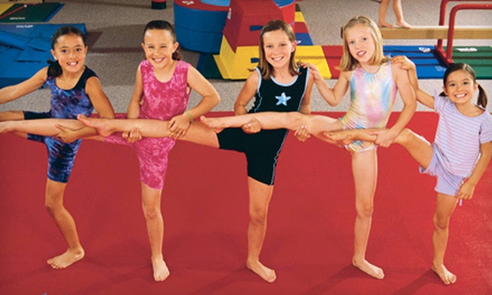 The Little Gym - Laurel: $49 for a One-Year Family Membership and One Month of Classes for One Child at The Little Gym ($120 Value)