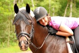 A Plus Performance Horses: One-Hour Horseback-Riding Lesson at A Plus Performance Horses (40% Off)