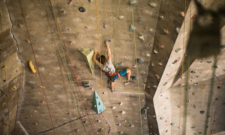 Unlimited Friday Night Indoor Rock Climbing with Harness Hire People $29 Up to $48 Value