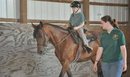 One or Two 30-Minute Private Therapeutic Horse-Riding Lessons at LifeHorse (Up to 50% Off)