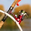 Half Off from Captain Hook's Charter Fishing