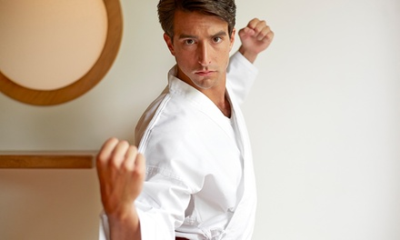 Four Weeks of Unlimited Martial Arts Classes at Serrano's Martial Arts (60% Off)