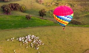 GTPromo: Passeio de balão, fotos e espumante para 1, 2, 3 ou 4 pessoas com a GT Promo – Caruaru