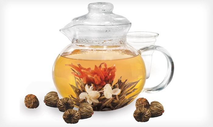 Flowering Tea Gift Set: Primula Flowering Tea Gift Set with a Teapot and 12 or 24 Teas (Up to 37% Off). Free Shipping and Free Returns.