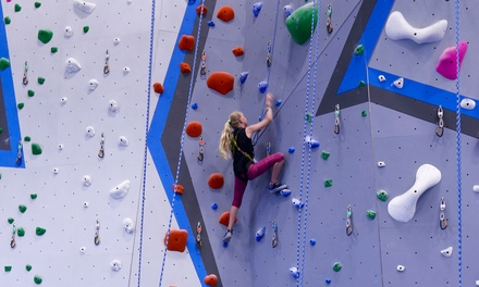 Belay Rock-Climbing Classes for One or Two at Central Rock Gym Buffalo (Up to 50% Off). 4 Options Available.