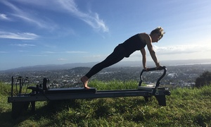 Reform Fitness & Rehabilitation: Reformer Pilates - 2 ($25) or 4 Classes ($45) at Reform Fitness & Dynamic Reformer Pilates Mt Eden (Up to $126 Value)