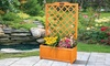 Large Rectangular Planter with Trellis Support With Free Delivery