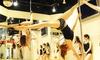 ポリッシュ - Polish: 【最大70%OFF】華麗に美しく、アクロバティックな趣味を≪ポールダンスなど選べるレッスン(入会金込)/5回分 or 10回分 or 20回分≫@ポリッシュ