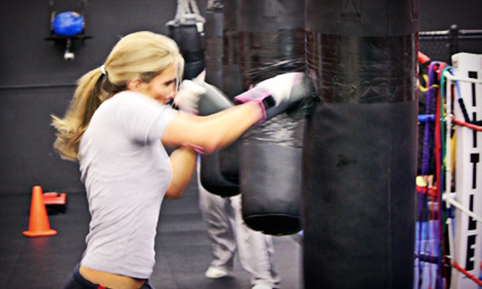 The Punch House - Norwood: 10 or 25 Boxing Classes at The Punch House (Up to 87% Off)