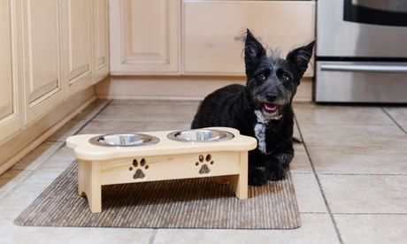 Elevated Dog Food Diner Set with Paw Prints c5d12d96-de96-11e7-af3d-002590604002