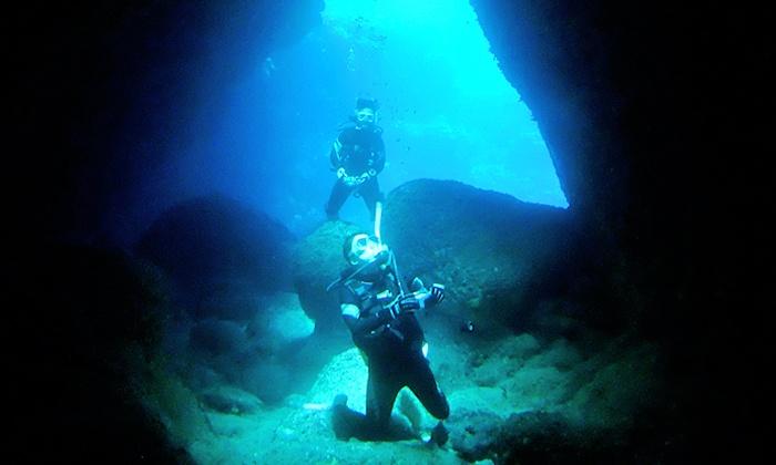 潜水屋 Ti-Da - 潜水屋 Ti-Da: 【最大85%OFF】手軽に海の世界へ。カワイイお魚さんとたわむれて≪海でお試しダイビングコース/1ダイブ or 2ダイブ≫ @潜水屋 Ti-Da