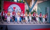 Turkishfest - Downtown Houston: Two, Four or Six Admission Tickets to Turkishfest (Up to 56% Off)
