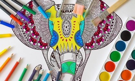 Colorable Canvas from CanvasOnSale (Up to 89% Off). Six Options Available.