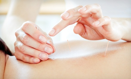 One or Three 60-Minute Tui-na Massage, Cupping, or Acupuncture Treatments at Spring Stream Acupuncture (Up to 51% Off)