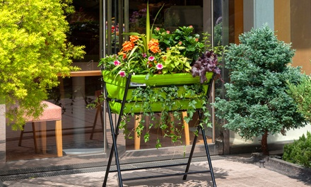 VegTrug Planter and Seeds for £29.99 With Free Delivery (40% Off)