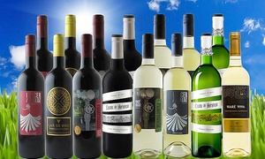 74% Off 15-Bottle Spring Wine Discovery Pack  at Splash Wines, plus 9.0% Cash Back from Ebates.