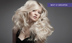 Paul Gordon Ltd: Cut and Condition (£14) With Highlights or Colour (£29) at Paul Gordon