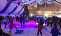 1, 5 o 10 accesos a pista de hielo, pista de trineo o al bosque navideño desde 3 € en Multiocio, 4 ubicaciones