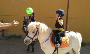 Hípica Baytar: 4, 8 o 12 clases de equitación desde 29,95 € en Hípica Baytar