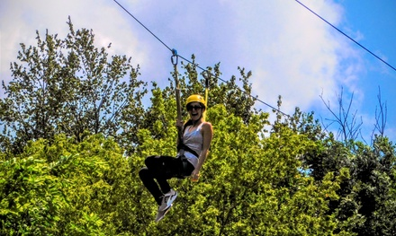 Two-Hour Admission for Two or Four People at Aerial Adventures Lake Geneva (Up to 52% Off)