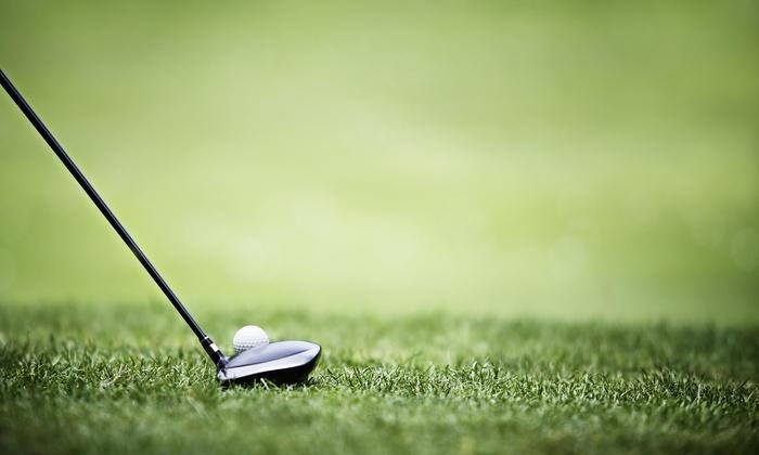 Scott's World Of Golf - Charleston: Four Week Beginner Golf Clinic from Scotts World of Golf (50% Off)
