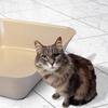 Van Ness Heavyweight Eco Cat Litter Pan