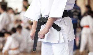 Cutting Edge Kempo Karate: Up to 62% Off Unlimited Karate Classes at Cutting Edge Kempo Karate