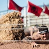 Up to 34% Off 2017 Reebok Spartan Races