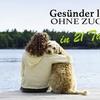 21 Tage Zucker-Detox-Kur