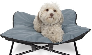 Paws and Pals Elevated Pet Bed with Raised Cot
