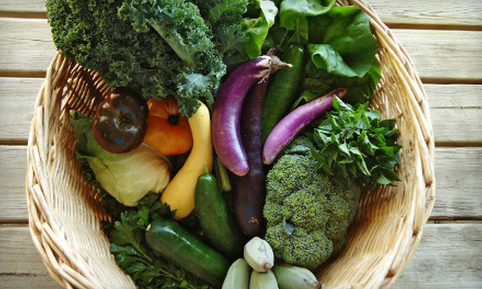 The Urban Farmer - Pompano Beach: $20 Worth of Locally Grown Seasonal Produce
